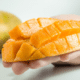 African Mango Erfahrungen